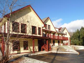 Beautiful Condo in Mont Tremblant - Barkmere vacation rentals