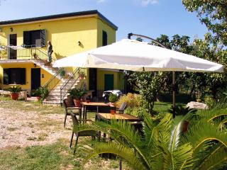 Cozy 3 bedroom Bed and Breakfast in Longobardi - Longobardi vacation rentals