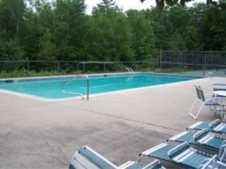 2 BD condo pet friendly sleeps 6 - North Conway vacation rentals