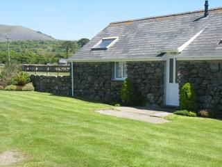 Perfect Bungalow with Internet Access and Outdoor Dining Area - Talybont vacation rentals