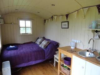 Romantic Shepherds Hut with countryside views - West Calder vacation rentals