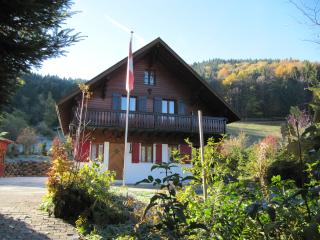 Lovely Chalet with Internet Access and Satellite Or Cable TV in Vaud - Vaud vacation rentals