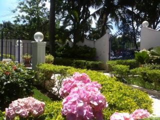 Bright 10 bedroom B&B in Boca Chica - Boca Chica vacation rentals