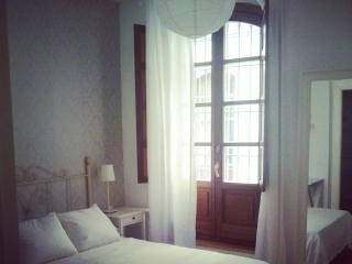 Nice Flat in birthplace of Picasso - Malaga vacation rentals