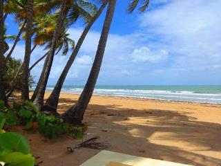 Spectacular Villa On Rio Mar, A Relaxing And Exciting Place! - El Yunque National Forest Area vacation rentals