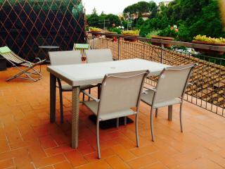 "Chianti apartment ""attico sul Chianti"" with terrace - Greve in Chianti vacation rentals"