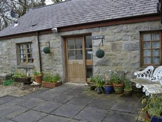 Barn Conversion close to the sea, mountains and woodlands at Trefor - Trefor vacation rentals