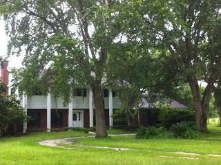 TAMPA ORLANDO BEAUTIFUL ANTEBELLUM PRIVATE ESTATE - Brooksville vacation rentals