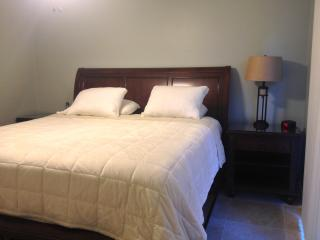 Short-term 1/1 Galleria Better than Extended Stay! - Katy vacation rentals
