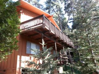 Beautiful Lake Arrowhead Cabin Getaway - Lake Arrowhead vacation rentals