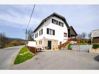 Canyon view House Biga 1 - Grabovac vacation rentals
