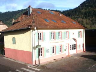 Bright 5 bedroom Gite in Grandfontaine - Grandfontaine vacation rentals