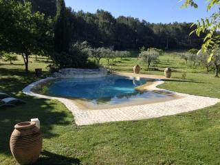 maison lumineuse 3chambres jardin 15 000m2 piscine - Ventabren vacation rentals