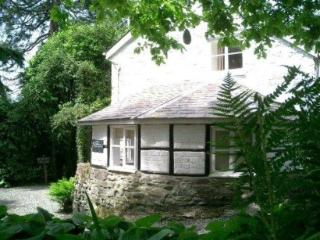 The Pool Cottage - Dolgellau vacation rentals