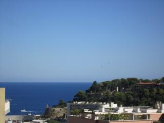 Nice Condo with Internet Access and A/C - Monte-Carlo vacation rentals