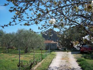 Holiday house Stara Frajla - Kali vacation rentals