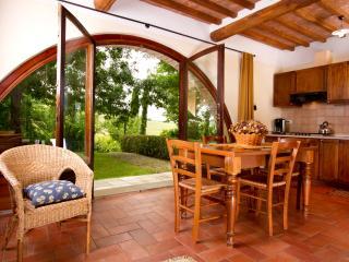 BORGO AL CERRO apt C1 CORTONA - Casole d Elsa vacation rentals