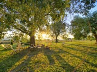 PORETA BIOFARM SUITES : LOWER: - Spoleto vacation rentals