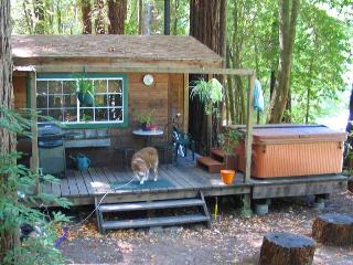 EDGEWATER CABIN - Sonoma County vacation rentals