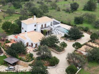 Monte das Figueiras, Hilltop Mansion with a view - Moncarapacho vacation rentals