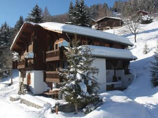 La Vanoise, La Plagne - Ski In Hot Tub Sauna Chef - Montchavin vacation rentals
