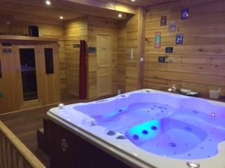 Domaine de Label   SPA  SAUNA  MASSAGES  FITNESS - La Salvetat-sur-Agout vacation rentals