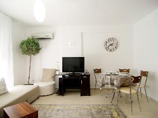 Fancy flat in Konyaalti. WiFi. - Antalya vacation rentals