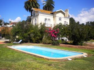 Luxury Villa - 10 mins Aveiro , 50 Km from Oporto - Aveiro vacation rentals