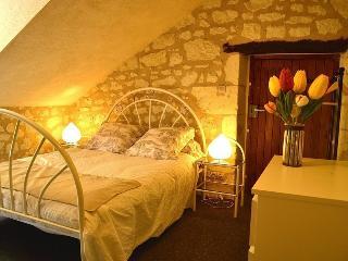 Gîte de charme près de Chinon - Ligre vacation rentals