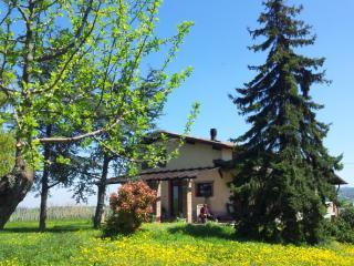 Nice Villa with Internet Access and Central Heating - Montecalvo Versiggia vacation rentals