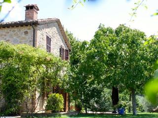 Frantoio the 19th Century home - Umbria vacation rentals