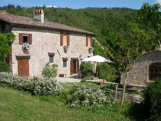 Casa mazzoli locazione turistica - Greve in Chianti vacation rentals