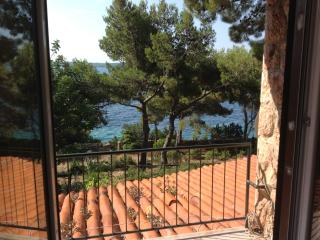 Nice Zavala Condo rental with Internet Access - Zavala vacation rentals