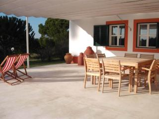 4 bedroom Farmhouse Barn with Internet Access in Santiago do Cacem - Santiago do Cacem vacation rentals