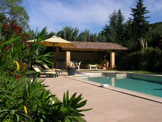 Comfortable Villa with private pool and garden - Correns vacation rentals