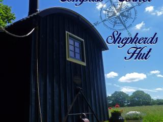 Comfortable Shepherds hut with Balcony and DVD Player - East Grinstead vacation rentals