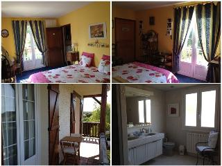 Nice House with Internet Access and Central Heating - Aillant-sur-Tholon vacation rentals
