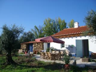 Paradise on earth, Casa Maria in Amoreiras Gare - Ourique vacation rentals