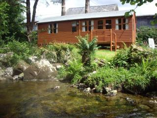 Beautiful Lodge with Internet Access and Television - Beddgelert vacation rentals