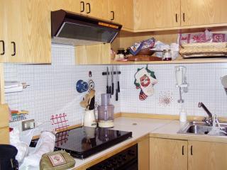 Maison Grappein - Cogne vacation rentals