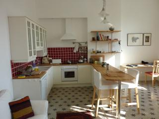 Sunny Condo with Internet Access and Dishwasher - Ventenac-en-Minervois vacation rentals