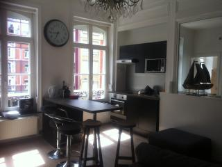 NATIONALE APPART HOTEL - Lille vacation rentals