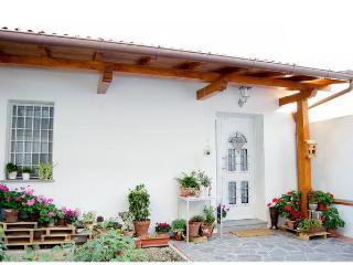 Casa Anteros per visitare Firenze e dintorni - Prato vacation rentals