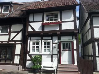 Nice Bungalow with Internet Access and Satellite Or Cable TV - Bodenwerder vacation rentals