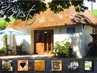 The Nest - Shaldon vacation rentals