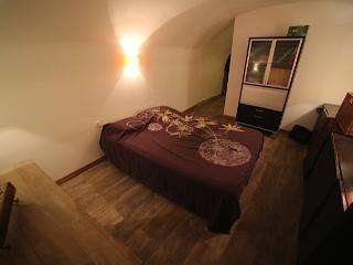 Centre historique Aix en Provence luxe et charme . - Aix-en-Provence vacation rentals