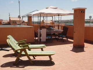 Gorgeous sunny apartment - Province of Granada vacation rentals