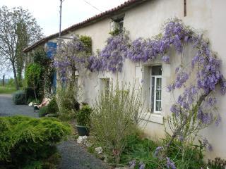 La Pybouliere 2km from mouilleron-en-pareds - Mouilleron-en-Pareds vacation rentals