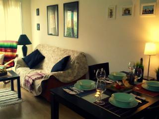 Cozy house w/ chill out garden, BBQ, great locatio - Puente Viesgo vacation rentals