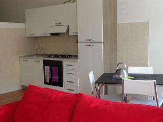 Confortable apartment in Lucca - Lucca vacation rentals
